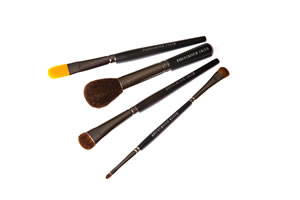 Professional Travel Size Makeup Brush Set (Patent #8562352)
